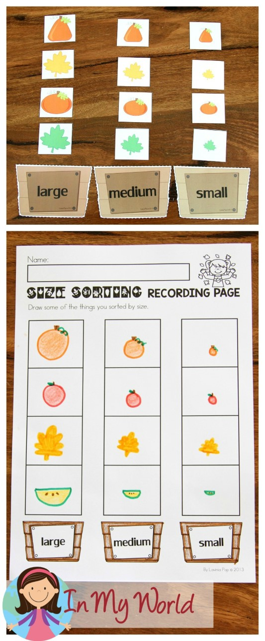 FREE Autumn / Fall Math Centers for Kindergarten. Sorting by size.