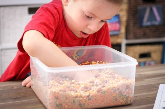 Letter of the Week F Alphabet Letter Find Sensory Bin