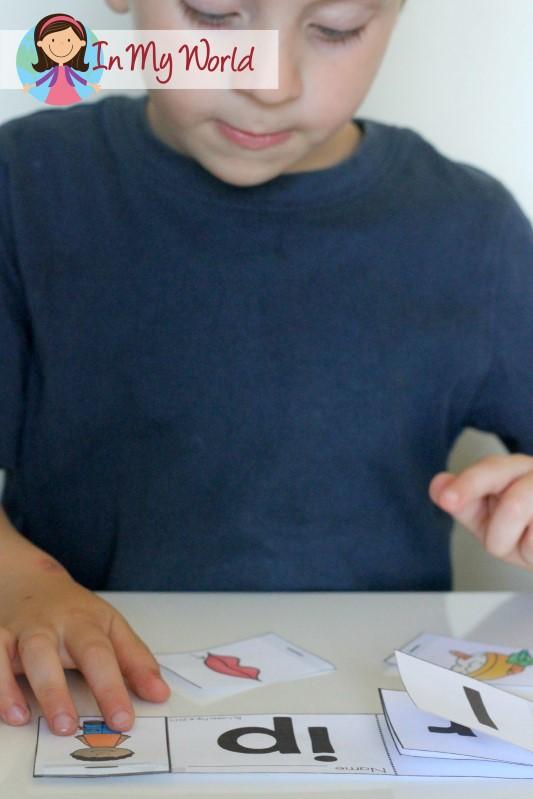 Preschool Letter P Word Family Flip Book