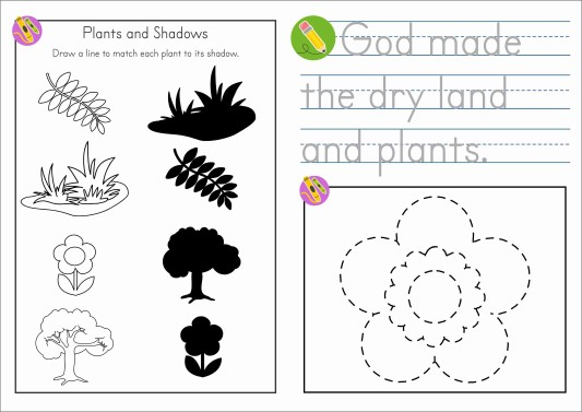 Sunday School Creation Day 3 Take Home Booklet