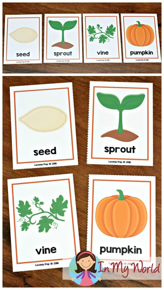 Autumn / Fall Preschool Centers pumpkin life cycle sequencing cards
