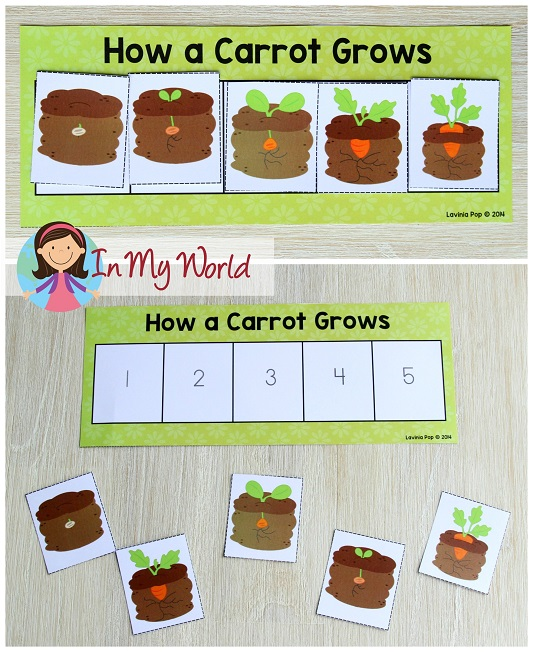 Spring Math Centers for Kindergarten. How a carrot grows sequencing activity.